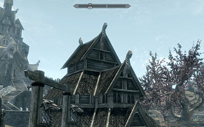 45-degree FoV in Skyrim