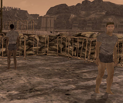 Soldiers in their underpants in Fallout New Vegas